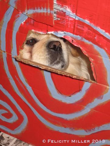 The Dog House2